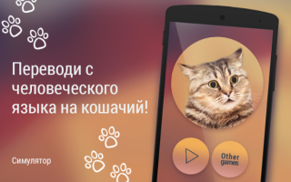 Кошачий Переводчик — приложение для Андроид