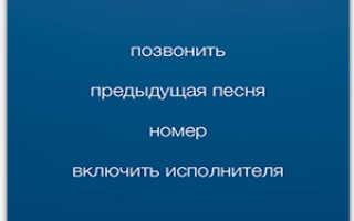 ТОП-6 способов отключения функции «Голосовое управление» на iPhone